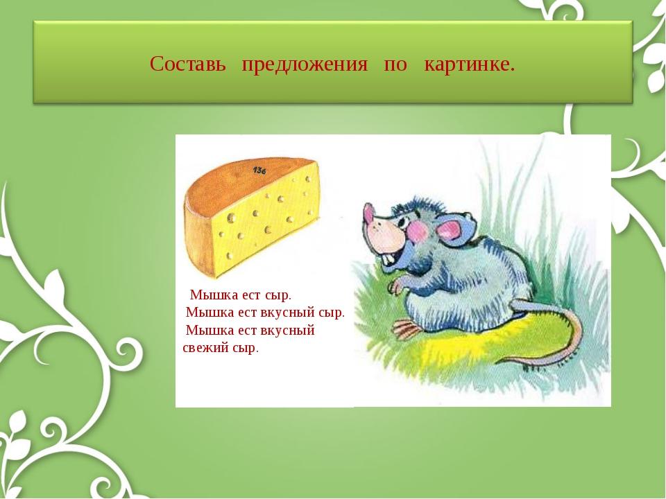 Мышка ест сыр. Мышка ест вкусный сыр. Мышка ест вкусный свежий сыр.