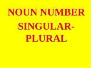 NOUN NUMBER SINGULAR- PLURAL