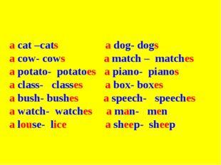 a cat –cats a dog- dogs a cow- cows a match – matches a potato- potatoes a p