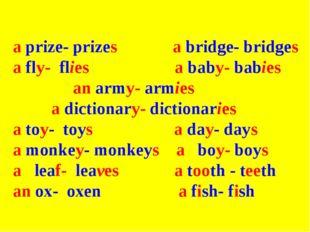 a prize- prizes a bridge- bridges a fly- flies a baby- babies an army- armie