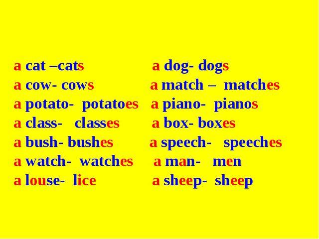 a cat –cats a dog- dogs a cow- cows a match – matches a potato- potatoes a p...