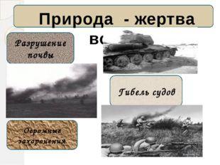 Природа - жертва войны Разрушение почвы Бомбы авиации Огромные захоронения О