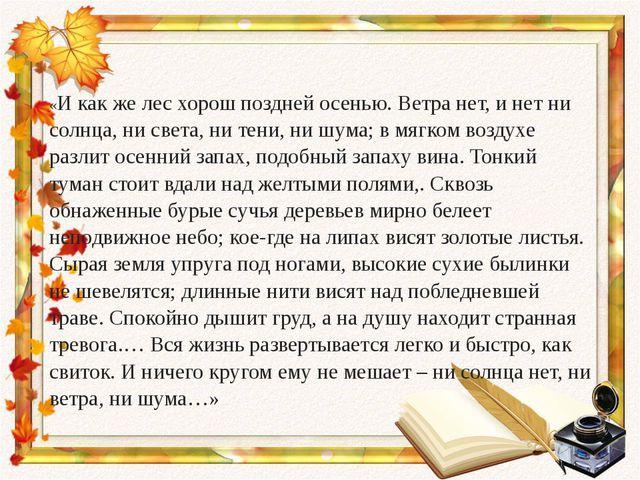 «И как же лес хорош поздней осенью. Ветра нет, и нет ни солнца, ни света, ни...