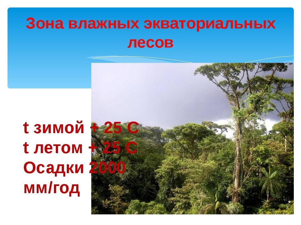 Зона влажных экваториальных лесов t зимой + 25 С t летом + 25 С Осадки 2000...