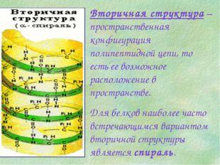 Вторичная структура – пространственная конфигурация полипептидной цепи, то ес