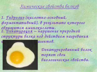 Химические свойства белков 1. Гидролиз (кислотно-основный, ферментативный), в