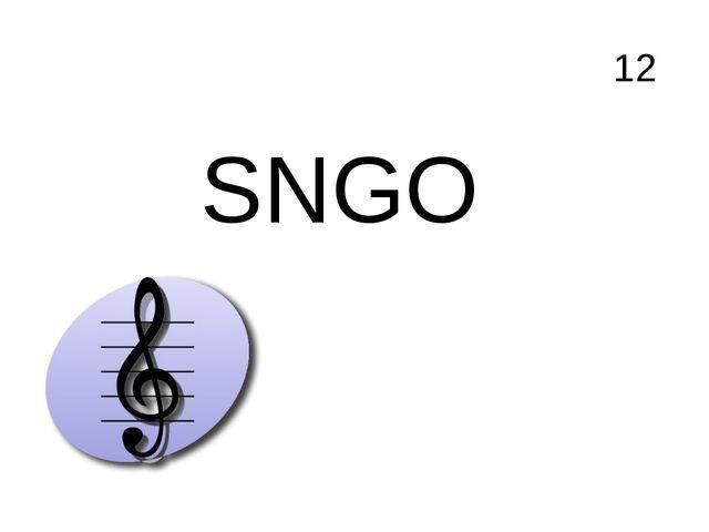 12 SNGO