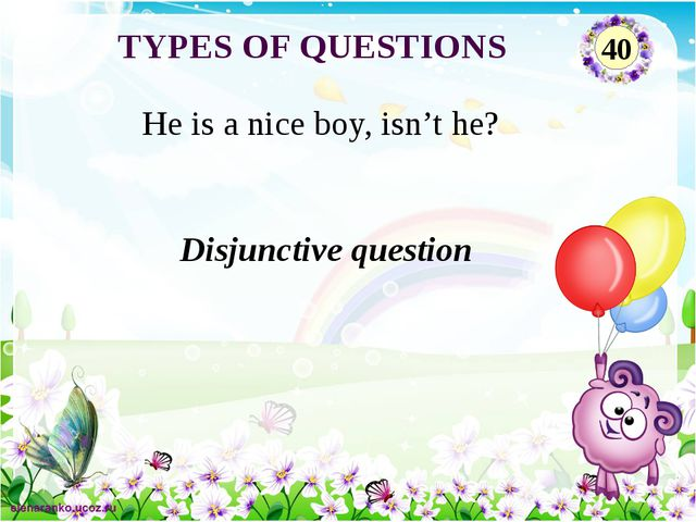 Disjunctive question He is a nice boy, isn't he? TYPES OF QUESTIONS 40