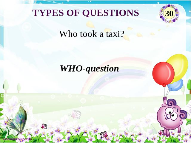 WHO-question Who took a taxi? TYPES OF QUESTIONS 30