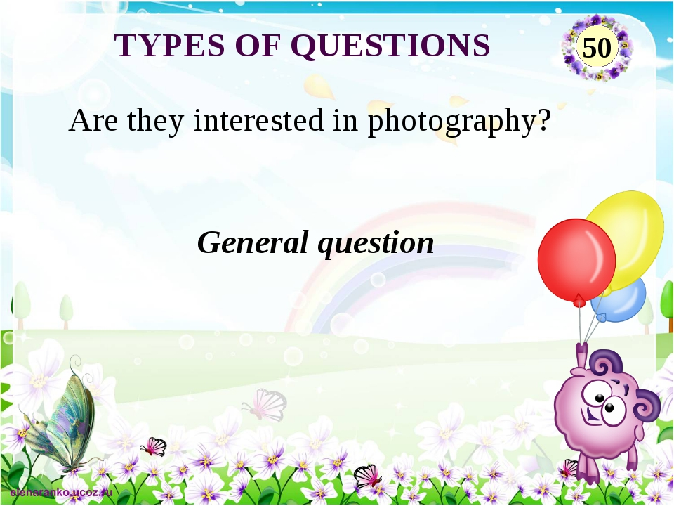 General question Are they interested in photography? TYPES OF QUESTIONS 50