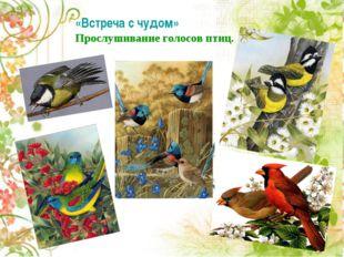 «Встреча с чудом» Прослушивание голосов птиц. Прослушивание голосов птиц