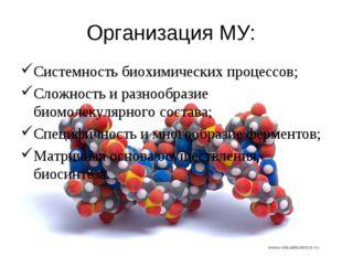 Организация МУ: Системность биохимических процессов; Сложность и разнообразие