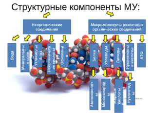 Структурные компоненты МУ: Макромолекулы различных органических соединений Не