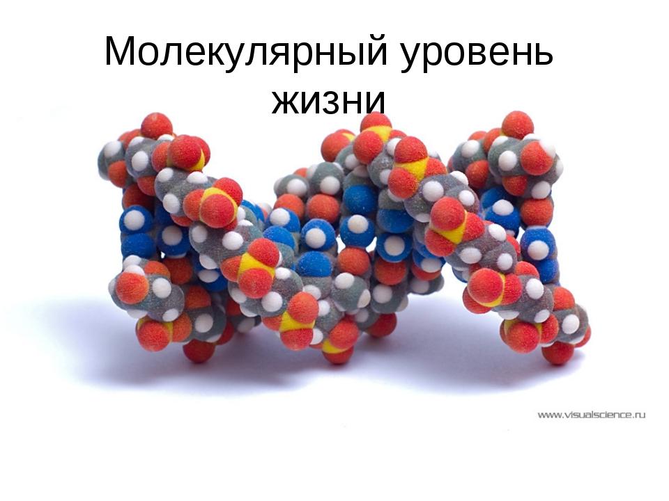 Молекулярный уровень жизни