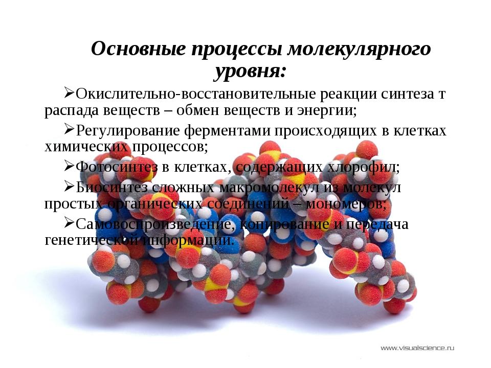Основные процессы молекулярного уровня: Окислительно-восстановительные реакци...
