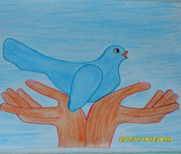 F:\Documents and Settings\Администратор\Мои документы\воспитательная работа\о птицах\фото1\SAM_1279.JPG