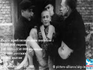 Всего приблизительно погибло : 1 100 000 евреев 140 000—150 000 поляков 100 0