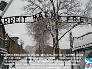 Многие поляки, русские, цыгане, французы, венгры и, конечно, евреи, всех возр