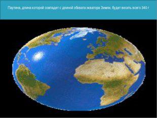 Паутина, длина которой совпадет с длиной обхвата экватора Земли, будет весит