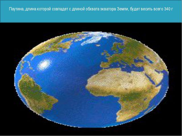 Паутина, длина которой совпадет с длиной обхвата экватора Земли, будет весит...