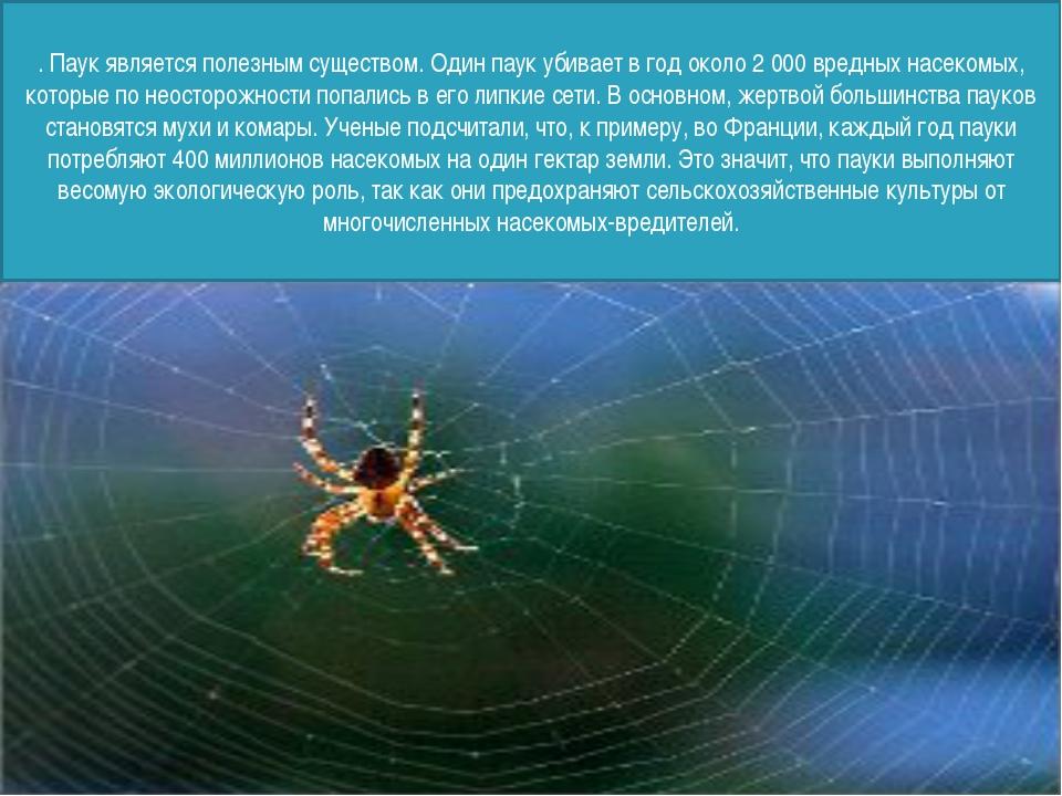 . Паук является полезным существом. Один паук убивает в год около 2 000 вред...