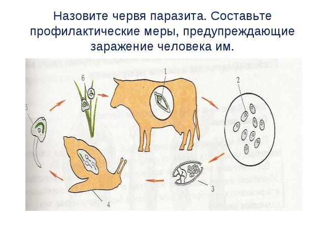 Назовите червя паразита. Составьте профилактические меры, предупреждающие зар...