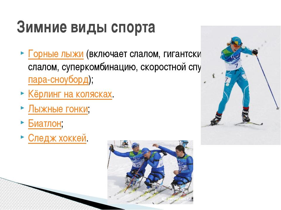 Горные лыжи(включает слалом, гигантский слалом, суперкомбинацию, скоростной...