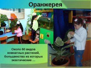 Оранжерея Около 60 видов комнатных растений, большинство из которых экзотичес