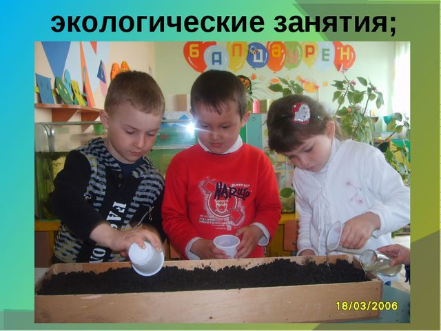 экологические занятия;