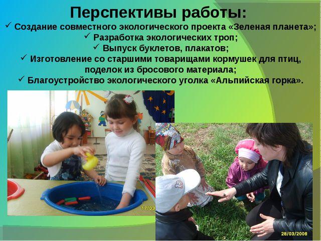 Перспективы работы: Создание совместного экологического проекта «Зеленая план...