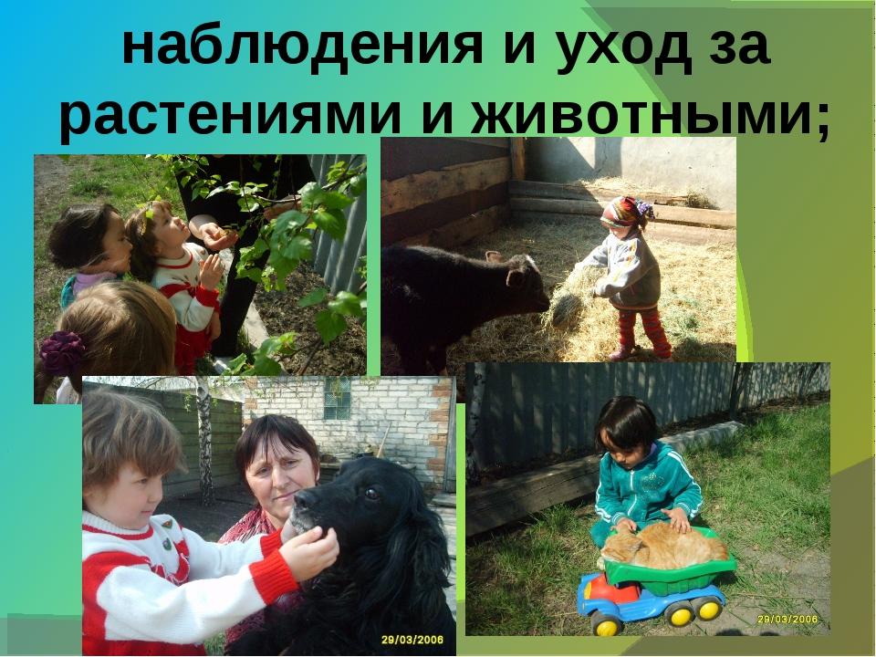 наблюдения и уход за растениями и животными;