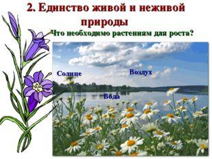 2. Единство живой и неживой природы Что необходимо растениям для роста? Возду