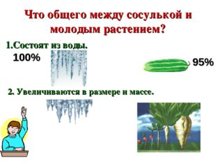 Что общего между сосулькой и молодым растением? 1.Состоят из воды. 95% 100% 2