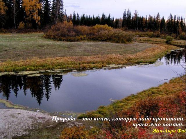 Природа – это книга, которую надо прочитать и правильно понять… Жан-Анри Фабр