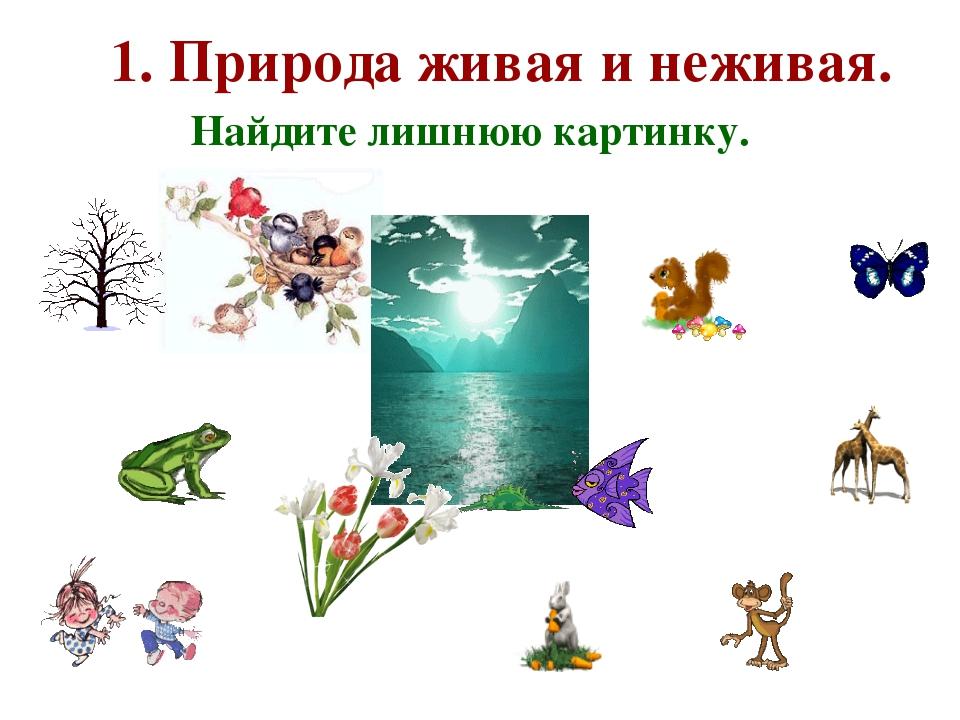 1. Природа живая и неживая. Найдите лишнюю картинку.