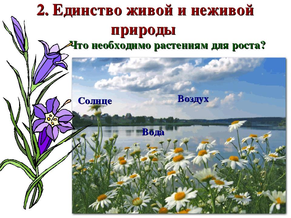 2. Единство живой и неживой природы Что необходимо растениям для роста? Возду...