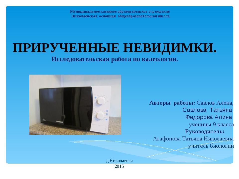 Муниципальное казенное образовательное учреждение Николаевская основная общео...