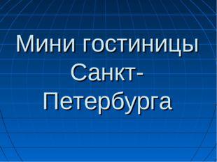 Мини гостиницы Санкт-Петербурга