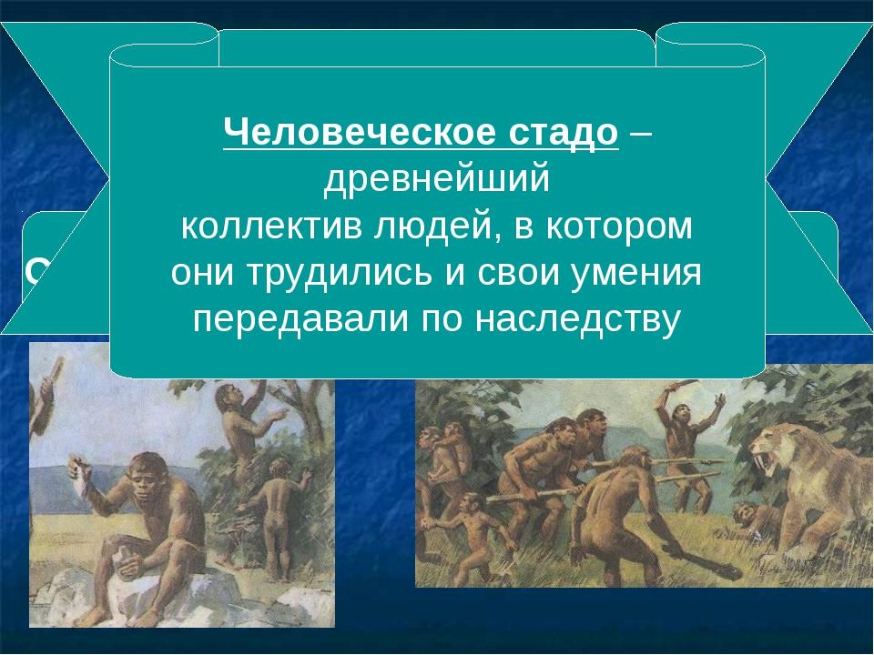 Добывание пищи Собирательство Охота Человеческое стадо – древнейший коллектив...