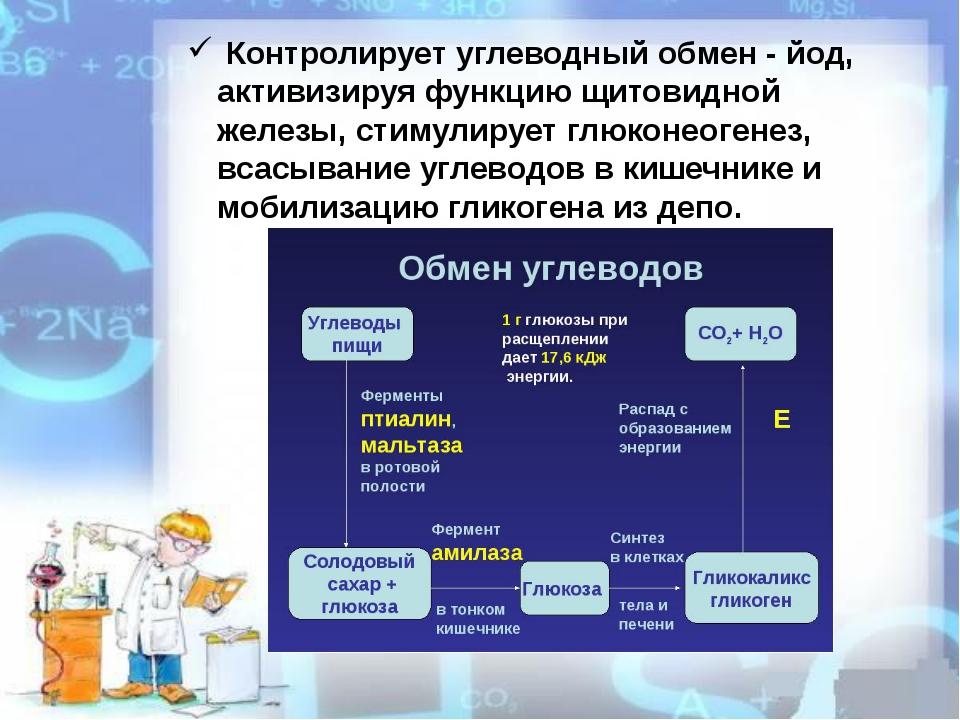 Контролирует углеводный обмен - йод, активизируя функцию щитовидной железы,...