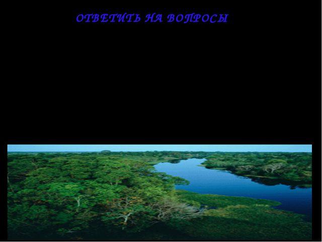 1. Чем объясняется своеобразие растительного мира тропических лесов? 2. Что т...