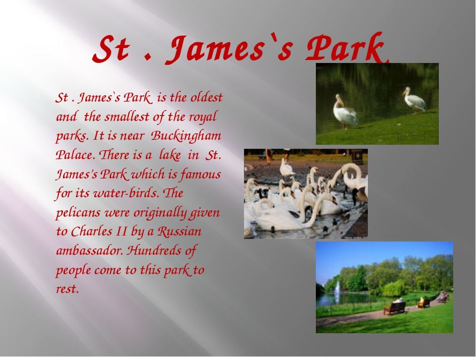 St . James`s Park St . James`s Park is the oldest and the smallest of the roy...