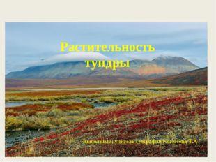 Растительность тундры Выполнила: учитель географии Котюсова Т.А.