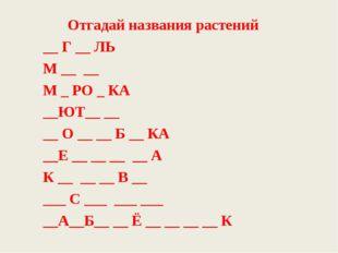 Отгадай названия растений __ Г __ ЛЬ М __ __ М _ РО _ КА __ЮТ__ __ __ О __ __