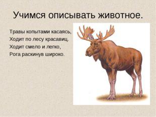 Учимся описывать животное. Травы копытами касаясь, Ходит по лесу красавиц. Хо
