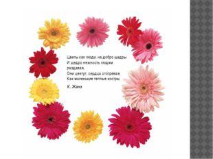 Цветы как люди, на добро щедры И щедро нежность людям раздавая, Они цветут,