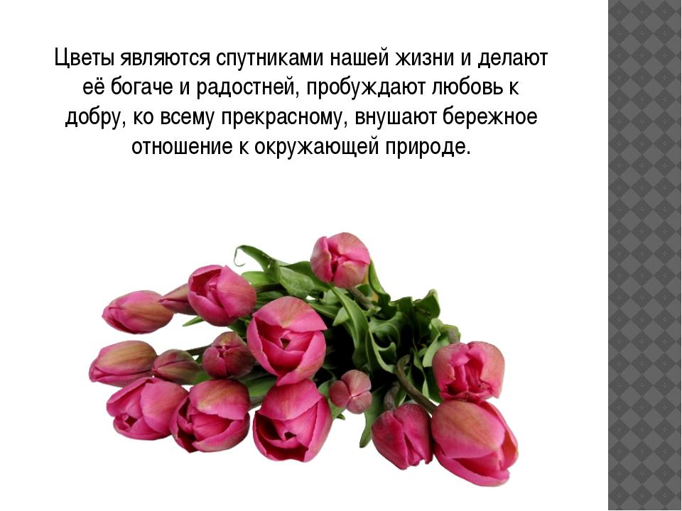Цветы являются спутниками нашей жизни и делают её богаче и радостней, пробуж...