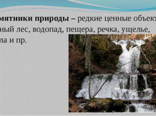Памятники природы – редкие ценные объекты: горный лес, водопад, пещера, речка