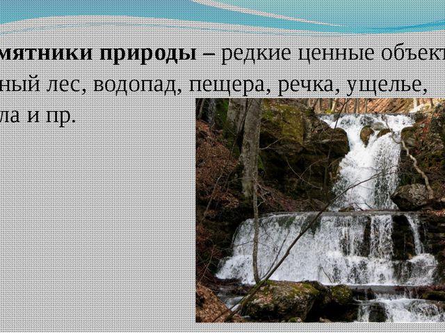 Памятники природы – редкие ценные объекты: горный лес, водопад, пещера, речка...