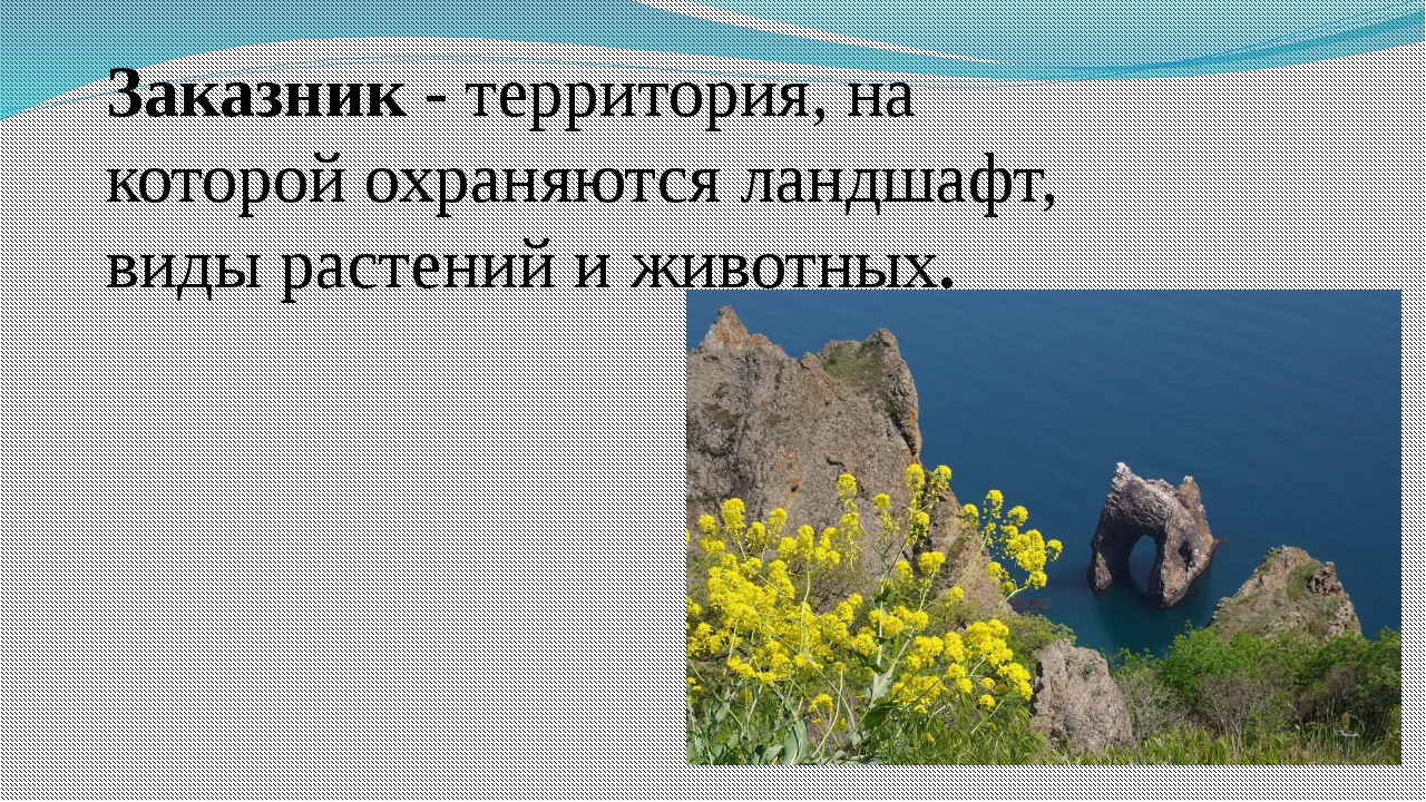 Заказник - территория, на которой охраняются ландшафт, виды растений и животн...